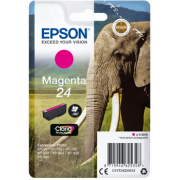 Consommable EPSON C 13 T 24234012