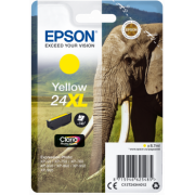 Consommable EPSON C 13 T 24344012